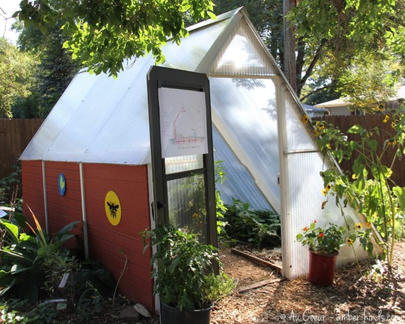 Northern Colorado Urban Homestead Tour