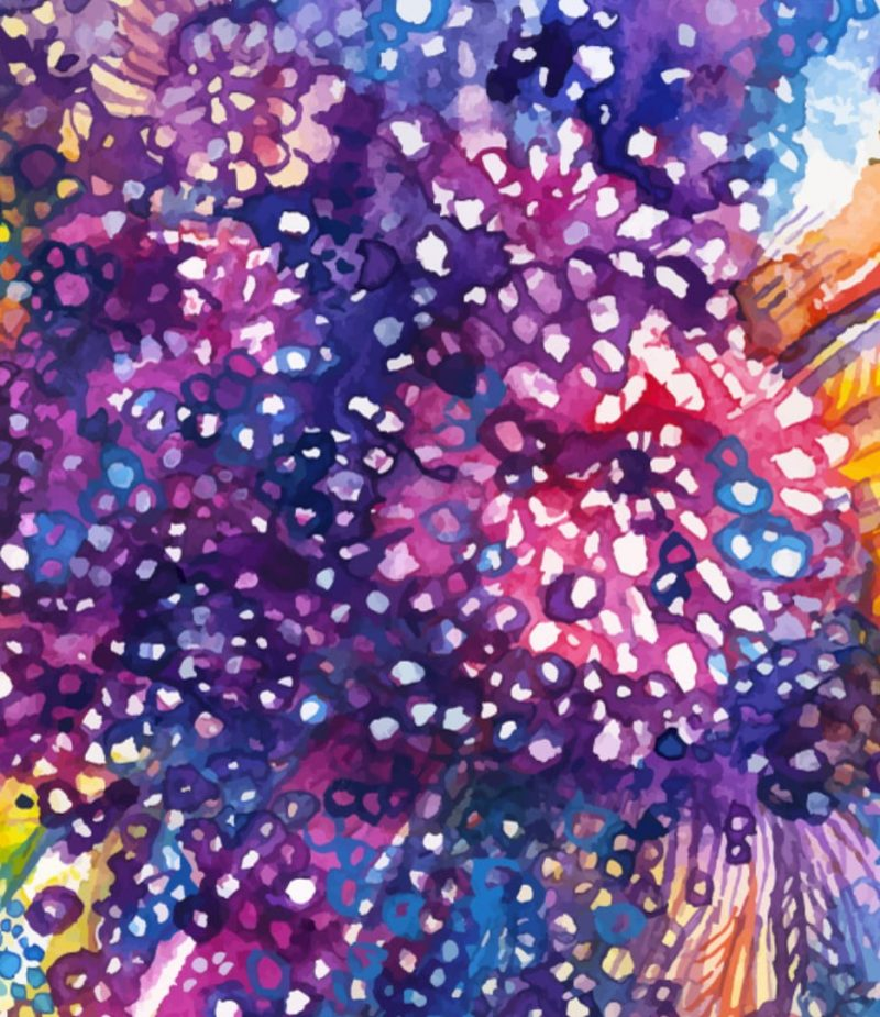 watercolor feather and abstract flower background